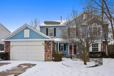 Streamwood Single Family Home New: 75 Magnolia Drive