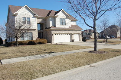 Plainfield Single Family Home New: 13512 Summergrove Drive