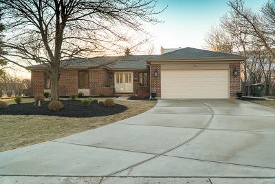Arlington Heights Single Family Home New: 954 South Walnut Avenue