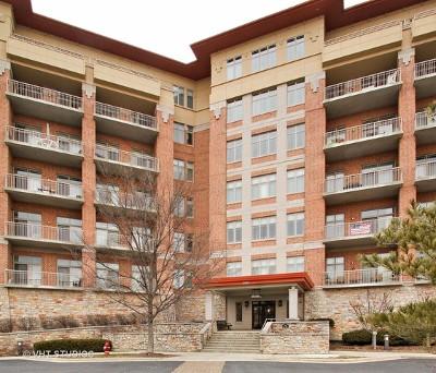 Wheeling Condo/Townhouse New: 100 Prairie Park Drive #512