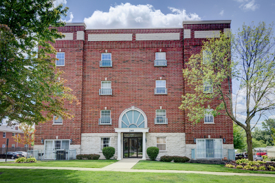 Palatine Condo/Townhouse New: 245 West Johnson Street #404