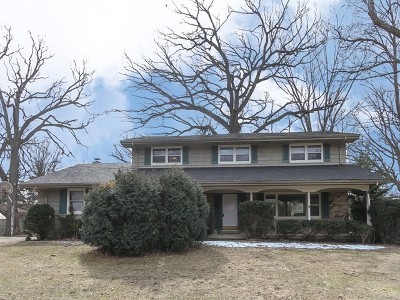 Dundee Single Family Home For Sale: 36w665 Oak Hill Drive