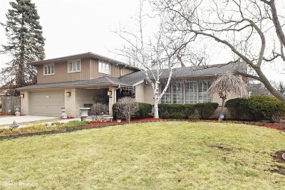 Bensenville Single Family Home New: 201 Jacquelyn Drive