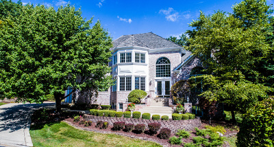Burr Ridge IL Single Family Home New: $999,000