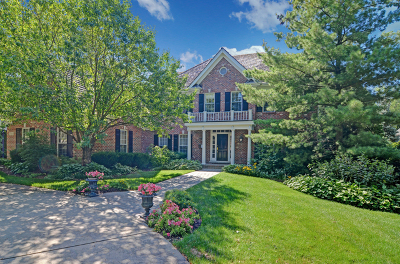 Glen Ellyn, Wheaton, Lombard, Winfield, Elmhurst, Naperville, Downers Grove, Lisle, St. Charles, Warrenville, Geneva, Hinsdale Single Family Home For Sale: 732 West North Street