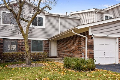 Palatine Condo/Townhouse New: 1963 North Heritage Drive
