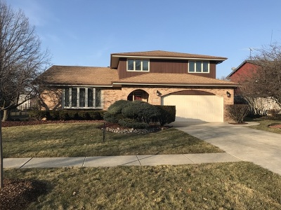Homer Glen Single Family Home New: 13116 West Pin Oak Drive