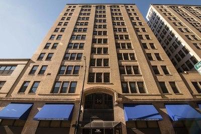 Chicago IL Condo/Townhouse New: $189,999