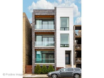 Chicago IL Condo/Townhouse New: $734,900