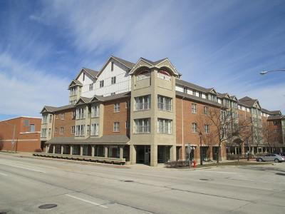 Roselle Condo/Townhouse For Sale: 50 North Bokelman Street #537