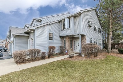 Palatine Condo/Townhouse New: 1310 South Parkside Drive