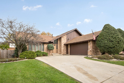 Homer Glen Single Family Home Contingent: 13034 Meadowview Lane