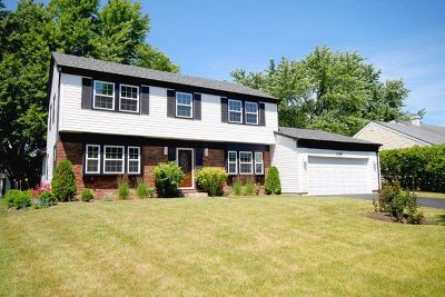 Buffalo Grove Single Family Home New: 1125 Parker Lane