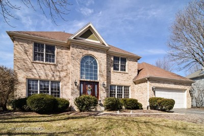 Naperville Single Family Home New: 1405 Monarch Circle