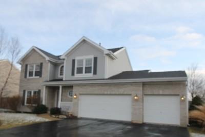 Oswego Single Family Home New: 437 Raintree Drive