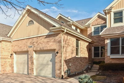 Orland Park Condo/Townhouse New: 10604 Golf Road