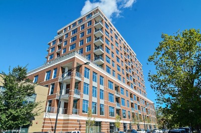 Chicago Condo/Townhouse New: 540 West Webster Avenue #1002