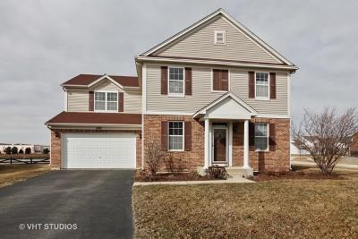 Oswego Single Family Home New: 247 Bluegrass Parkway