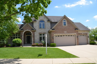Plainfield Single Family Home New: 26407 Silverleaf Drive