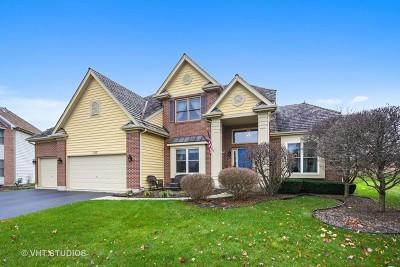 Single Family Home New: 1250 Birchdale Lane