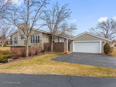 Oak Brook Condo/Townhouse Re-Activated: 132 Briarwood Avenue
