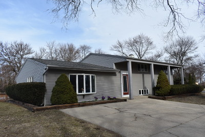 Schaumburg Single Family Home New: 417 Pleasant Drive