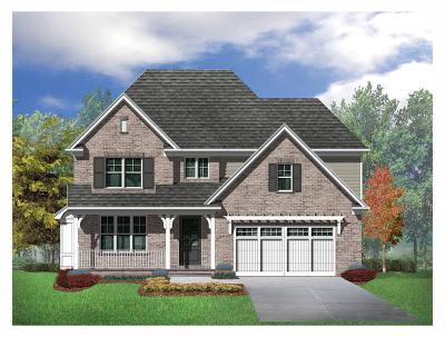 Burr Ridge Single Family Home For Sale: 109 Lakeside (Lot 5) Circle