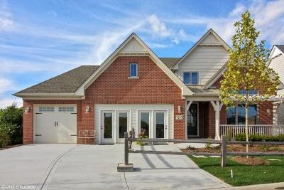 Burr Ridge Single Family Home New: 101 Lakeside (Lot 1) Circle