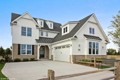 Burr Ridge Single Family Home New: 105 Lakeside (Lot 3) Circle