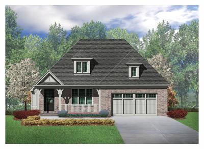Burr Ridge Single Family Home New: 107 Lakeside (Lot 4) Circle