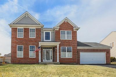 Plainfield Single Family Home New: 12934 Terrace Boulevard