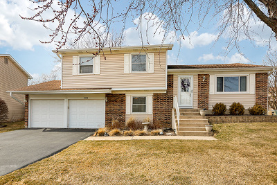Hoffman Estates Single Family Home New: 4491 Bayside Circle
