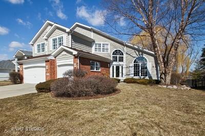 Highland Park Single Family Home For Sale: 1181 Hilary Lane