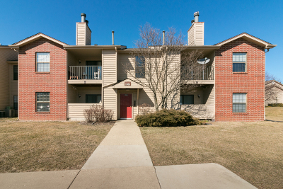 Palatine Condo/Townhouse New: 1951 North Hicks Road #109