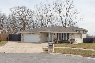 Palos Heights, Palos Hills Single Family Home New: 8300 West 99th Place
