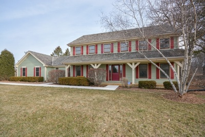 Winfield Single Family Home For Sale: 28w210 Cantigny Drive