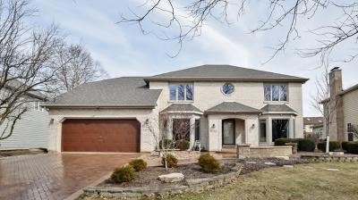 Naperville Single Family Home New: 481 De Lasalle Avenue