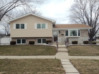 Tinley Park Single Family Home New: 17360 Oketo Avenue