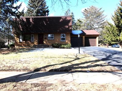 Elgin IL Single Family Home New: $249,900