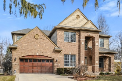 Highland Park Single Family Home For Sale: 991 Bob O Link Road
