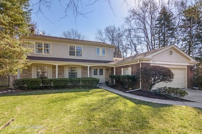 Northbrook Single Family Home For Sale: 2904 Norway Pine Lane