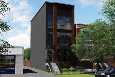 Chicago Condo/Townhouse New: 1012 North Paulina Street #1