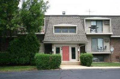 Naperville Condo/Townhouse New: 258 East Bailey Road #A