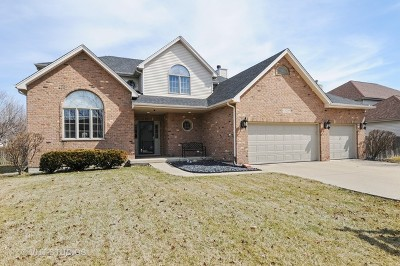 Plainfield Single Family Home New: 13209 Blackstone Lane