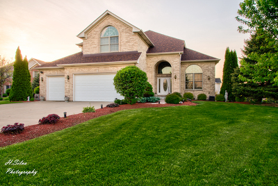 Single Family Home For Sale: 1232 Coyote Court