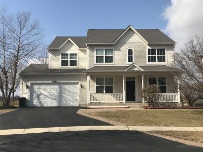 Bolingbrook Single Family Home New: 819 Bethel Avenue