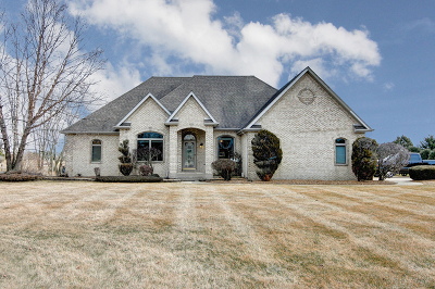 Manhattan Single Family Home For Sale: 24101 South Schoolhouse Road