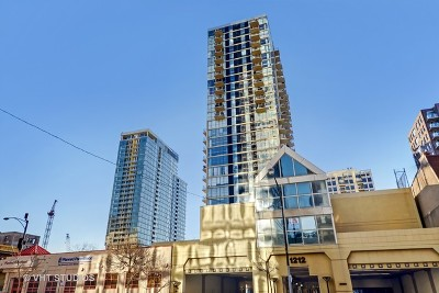 Chicago Condo/Townhouse New: 1212 North Lasalle Street #601
