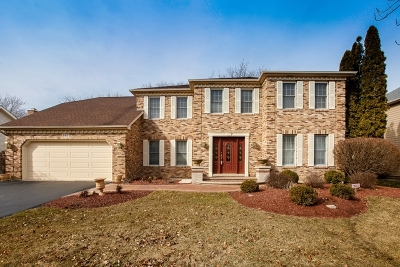 Naperville Single Family Home New: 293 Winding Creek Drive