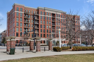 Chicago Condo/Townhouse New: 343 West Old Town Court #203